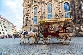 Pferdehalterhaftpflicht - Pferde mit Kutsche in Dresden